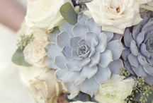 Wedding Themes: Succulents / Succulents have been taking the world by storm in fashion, home decor and now weddings. Here's some inspiration from the trend to pick out for your big day.