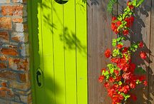 Delectable Doors / I love doors who knows why! I also like ideas to make front  entrances attractive and welcoming.