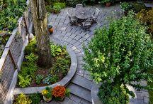 MIDGE's garden ideas