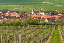 Czech Republic -South Moravia