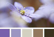 Colores de pintura habitacion / Pinturas habitación