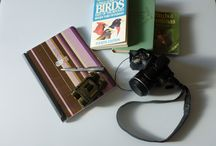 Birding - Bird Watching - Ornithology