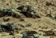 Mars 35