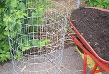 My garden / I wish I had a green thumb