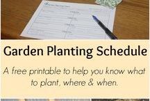 Planting Schedules