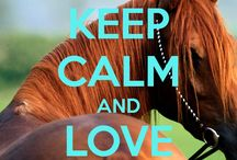 ja keep calm and love horses