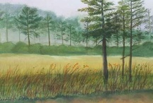 Watercolour Paintings I Like