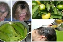 Guava leaves remedies