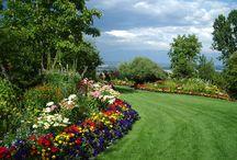 Gardens / by Jan-Peter van Wermeskerken