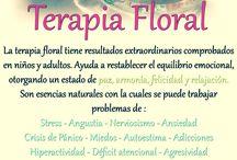 Remedios-Elixires florales / Tablero sobre la terapias naturales con remedios florales  como las flores de bach,las flores del mediterraneo,las flores saint germain y Las flores de Alba.