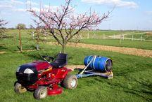 Rouleau à gazon au verger / Le passage du rouleau, dès la fin de l'hiver par sol humide mais non détrempée,  permet d'éliminer les bosses, afin de maintenir la pelouse bien plane et ainsi permettre de faire une tonte plus rapide.