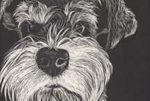 Pet Illustrations