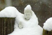 snowy yoga