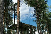 Tree top házak