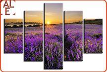 fotoobrazy / Fotoobrazy drukowane na płótnie