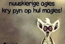 Afrikaans...my hart.