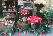 Flowers / Flower shop in Avignon