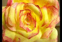 Paper Art & Crafts & Flowers - DIY / by Susannah Bella