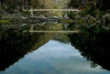 tasmania honeymoon