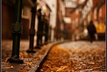 The Smell Of Autumn Leaves And Earth...
