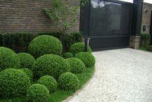 Country House - Isola Garden Design / Garden Design Inspiration