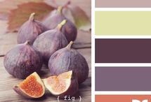 Barvy v interieru / Barvy v interieru, kombinace barev, barevne schema