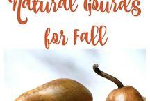 Gourds