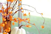 Fall Decor / Pumpkins and color.  Decorate the table and the front of the house with seasonal plants.