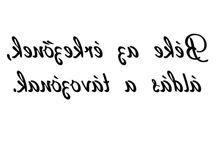 transzfer szövegek
