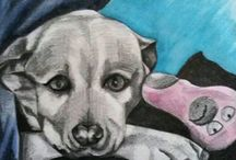 Gabby.E.Artistry / I Live in Cape Town and studied at Ruth Prowse School Of Art...After many years I have decided to eventually combine my 2 loves which are Animals and Art and have started doing Pet Portraits...my aim is to put love into every portrait and a smile on someones face.