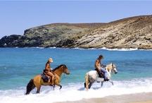 Backhorse riding in Mykonos: The island edition of far west / http://lifethinktravel.eu/category/mykonos/