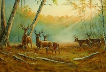 "My Oil Paintings, Animals  / Hi and Welcome! Thank you for visiting! You will find here my handmade Oil Paintings! I would be glad if you ""Like"" my side, and leave some comments. I will continually upload new Paintings, some of them are also for sale. http://www.facebook.com/paintings4u"