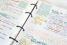 Organização  e estudos
