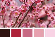 """Eventi a colori : a maggio la """" vie en rose """" / Think Pink ovvero Pensa Positivo"""