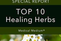 10 Top Healing Herbs
