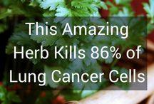kanker longen remedie