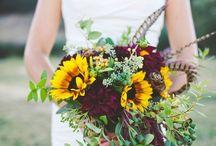Sunflowers n Blanc