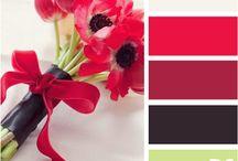 Kleur keuses - rooi/oranje/geel