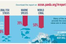 Diving and Marine Conservation Infographics