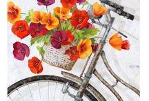 Bicycle & Flowers / Rower i kwiaty
