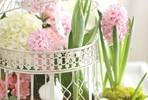 Feeling Springy! / Pins of my favorite Spring decorating ideas
