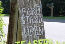 "April 2016 - ""Freshly Picked"" a Farmers Market theme."