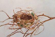 #rhutmt #disegni #nidi #nest #matita