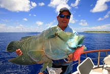 WFN Hosts / by World Fishing Network