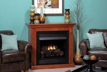 Fireplace System:  Traditional / Traditional Fireplace Systems