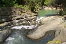 Rivers in Puerto Rico & Caribbean!!! / by Migdalia Gomez