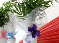 Gift a plant online in hyderabad / Buy plants in hyderabad,Plant nurseries in hyderabad,Gift a plant online in hyderabad,Buy plants online in hyderabad,Send plants online in hyderabad,Buy bonsai plants online in hyderabad,Buy bonsai plants in hyderabad,Bonsai plants for sale in hyderabad,Bonsai plants online in hyderabad,Order plants online in hyderabad
