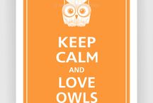 Crazy for owls / Owls