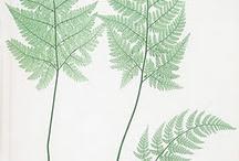 Printables / . / by Susan Garner Wisdom