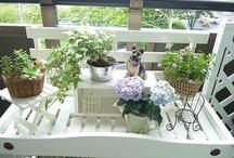 Natural gardening / Natural gardening